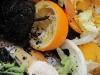 kompost rothwein_10